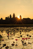 Sunrise in Angkor Wat with water lilies Royalty Free Stock Photography
