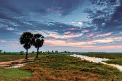 Sunrise at Anlung Pring Protected Landscape Royalty Free Stock Image