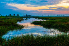 Sunrise at Anlung Pring Protected Landscape Royalty Free Stock Photos