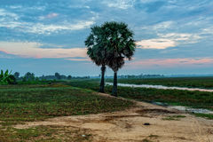 Sunrise at Anlung Pring Protected Landscape Royalty Free Stock Photo