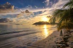 Sunrise at Anse Volbert beach on Praslin on the Seychelles. Palm tree on beautiful tropical Anse Volbert beach at Praslin on the Seychelles Stock Photo