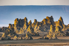 Sunrise around the Volcanic Chimneys of Lac Abbe. Sunrise around the Volcanic Chimneys of Lake Abbe aka Lac Abbe Bad, Djibouti, East Africa, Horn of Africa Stock Photo