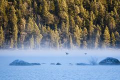 Free Sunrise At Inari Lake, Finland Royalty Free Stock Photo - 104509685