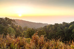 Sunrise with autumn forest on mountain Royalty Free Stock Photography