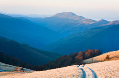 Sunrise autumn mountain road view. Royalty Free Stock Photography
