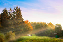Sunrise in the autumn park Royalty Free Stock Images