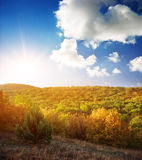 Sunrise in autumn wood Royalty Free Stock Photography