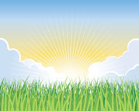 Sunrise Background. An illustration of the rising sun on a grass field Stock Image