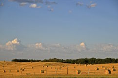 Sunrise on a baled field of wheat straw Royalty Free Stock Photo