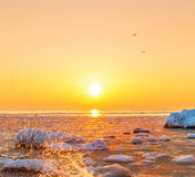 Sunrise on the bank of the winter sea. Stock Photography