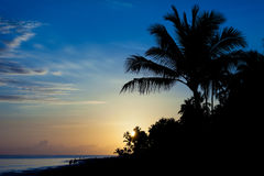 Sunrise at Barcelo Punta Cana, Dominican Republic. Sunrise on a tropical island Royalty Free Stock Photography