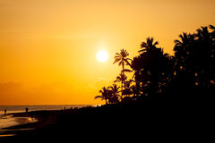 Sunrise at Barcelo Punta Cana, Dominican Republic. Sunrise on a tropical island Stock Photo
