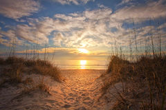 Sunrise at the beach. Beautiful morning sunrise at the beach Royalty Free Stock Image