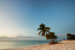 Sunrise on a beach. Early morning at Sombrero Beach at Marathon Island in Florida, USA Stock Photos