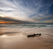 Sunrise on beach with log in foreground. On square format Stock Photography