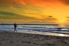 Man jogs on the beach Stock Photography