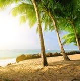 Sunrise on a beach Stock Photos