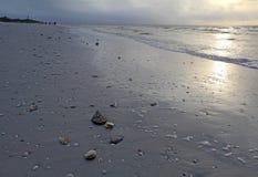 Sunrise on the beach at Sanibel Island Florida. Shells, sand and surf on the beach at sunrise on Sanibel Island, Florida with the lighthouse and unidentifiable royalty free stock images
