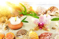 Sunrise on the beach spa concept. With orchid and candles Stock Photo