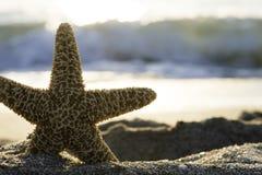 Sunrise on the beach. Royalty Free Stock Photography
