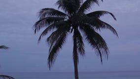 Sunrise on the beach. Thailand, Phuket, dawn on the beach in Karon stock video