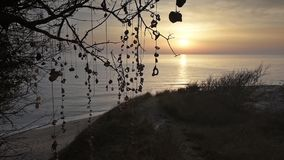 Sunrise on the beach stock video
