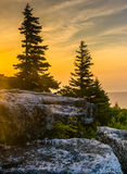 Sunrise at Bear Rocks Preserve, in Dolly  Sods Wilderness, Monon Stock Photography