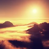 Sunrise in a beautiful mountain of Czech-Saxony Switzerland. Sandstone peaks increased from fog, the fog is orange due to sun rays Royalty Free Stock Photos