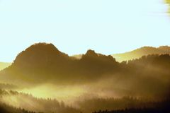 Sunrise in a beautiful mountain of Czech-Saxony Switzerland. Sharp hills increased from foggy background, the fog is orange due to Royalty Free Stock Photos