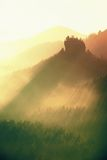 Sunrise in a beautiful mountain of Czech-Saxony Switzerland. Sharp hills increased from foggy background, the fog is orange due to Royalty Free Stock Images