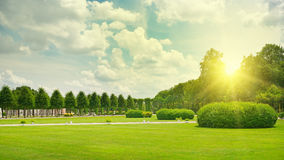 Sunrise in beautiful park Royalty Free Stock Image