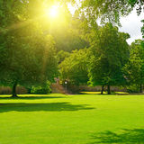 Sunrise in beautiful park. Stock Photography
