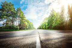 Sunrise beautiful road in forest Stock Photo