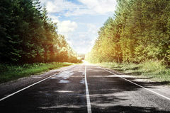 Sunrise beautiful road in forest Royalty Free Stock Images