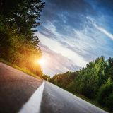 Sunrise beautiful road in forest Stock Images