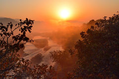 Sunrise. Beautiful view of sunrise in Forest Royalty Free Stock Image