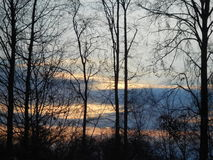 Sunrise behind leafless trees. Part of a forest, cloudy sky, rising sun Stock Images