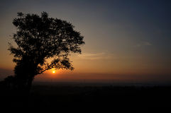 Sunrise behind the trees. In indonesia Royalty Free Stock Photos