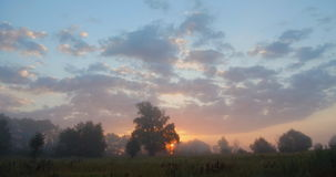 Sunrise behind the trees. Fog in the morning over the field. video 4k stock footage