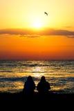 Sunrise birds royalty free stock images