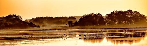 Sunrise on Black Duck Pool Stock Photography