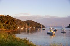 Sunrise and boats in the harbour of Mangonui, New Zealand Royalty Free Stock Images