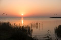 Sunrise at the Bodden on Fischland. In Germany royalty free stock photo