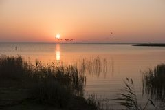 Sunrise at the Bodden on Fischland. In Germany stock image