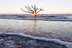 Sunrise at Botany Bay beach Royalty Free Stock Image