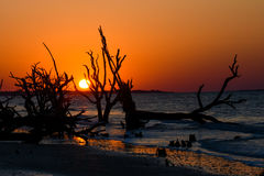 Sunrise at Botany Bay Plantation, Edisto Island, South Carolina Royalty Free Stock Photos