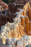 Sunrise in Bryce Canyon Royalty Free Stock Photos