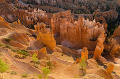 Sunrise in Bryce Canyon Stock Photography