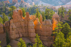 Sunrise in Bryce Canyon National Park Stock Images