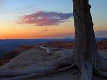 Sunrise From Bryce Rim Stock Photos